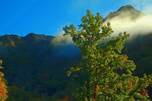 Chimney_Tops_Great_Smoky_Mountains